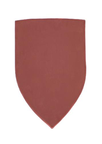 Shield-with-red-priming-coat